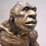 Почему теория Дарвина общепринята в научном мире